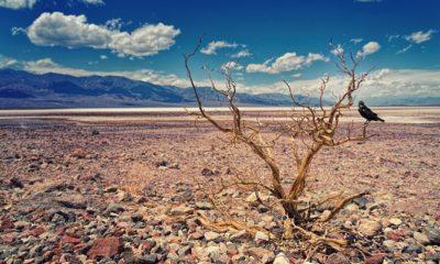 Los sitios más calurosos del mundo